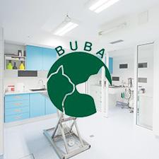Nove web stranice Bube
